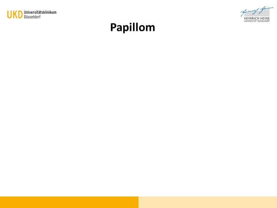 Blickdiagnose - 2 Papillom