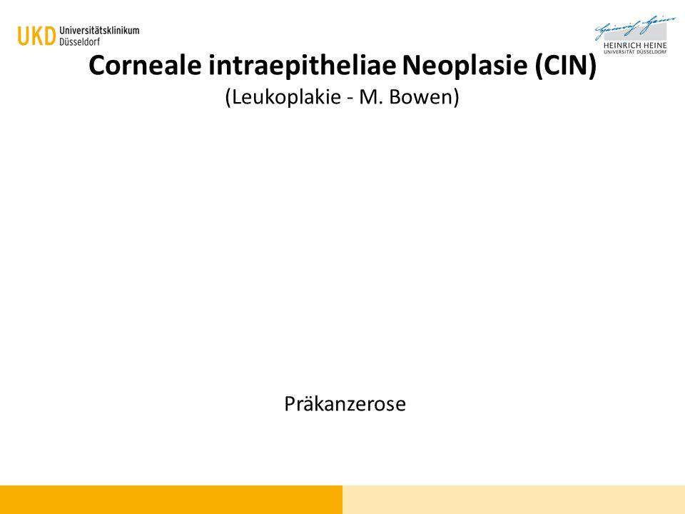 Corneale intraepitheliae Neoplasie (CIN) (Leukoplakie - M. Bowen)