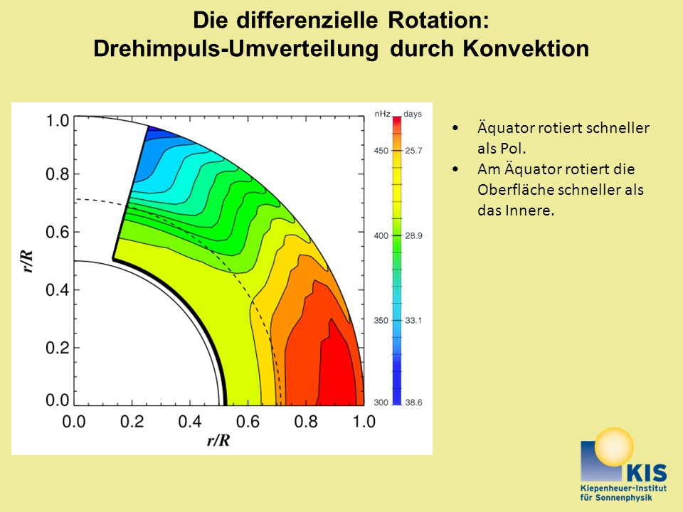 Die differenzielle Rotation: Drehimpuls-Umverteilung durch Konvektion