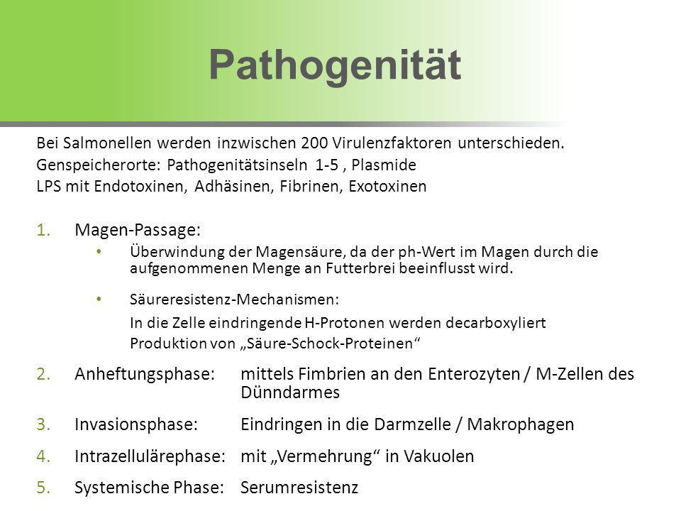 Pathogenität Magen-Passage: