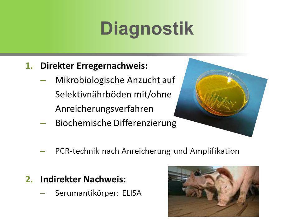 Diagnostik Direkter Erregernachweis: Mikrobiologische Anzucht auf