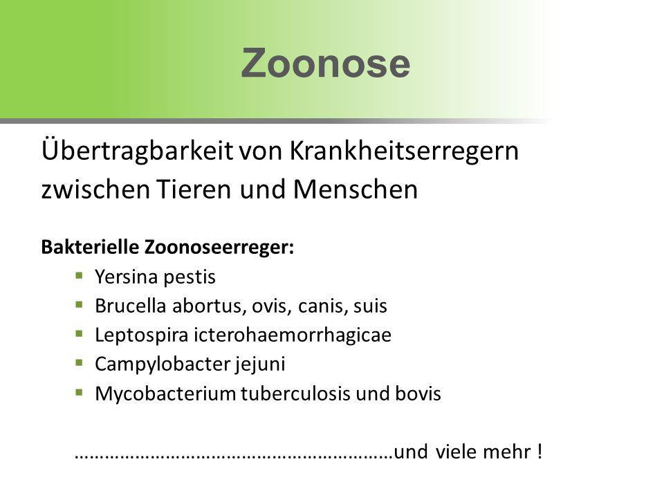 Zoonose Übertragbarkeit von Krankheitserregern