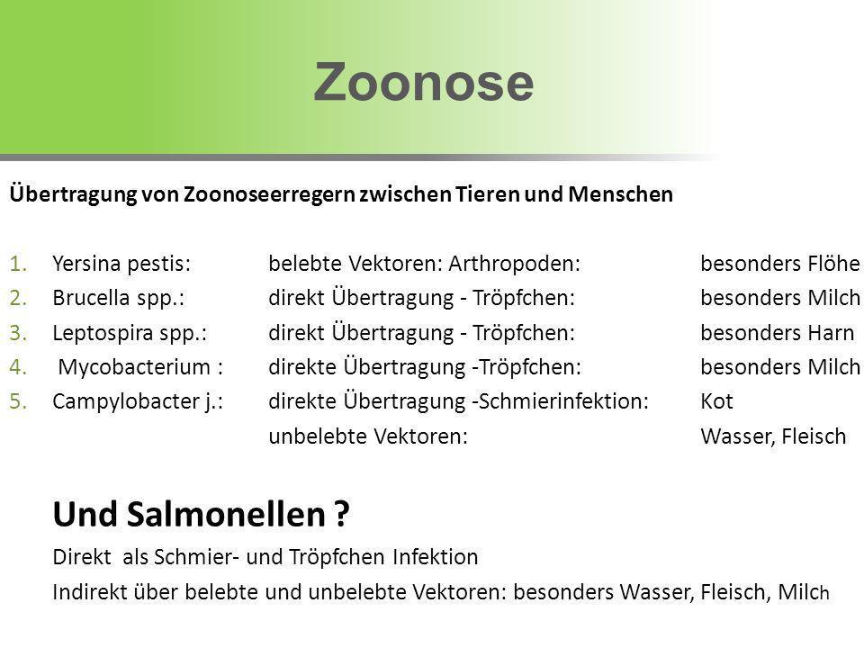 Zoonose Und Salmonellen