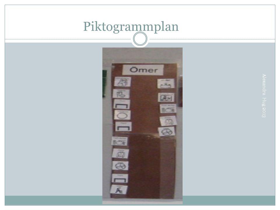 Piktogrammplan Alexandra Hug 2013