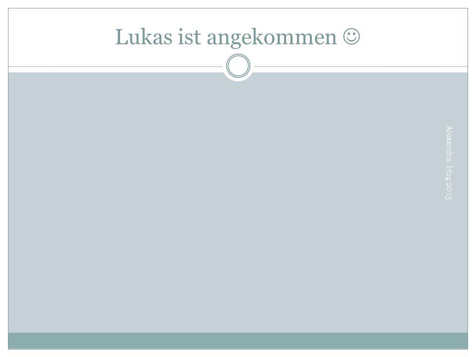 Lukas ist angekommen  Alexandra Hug 2013