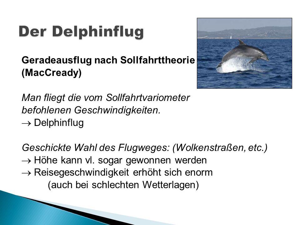 Der Delphinflug