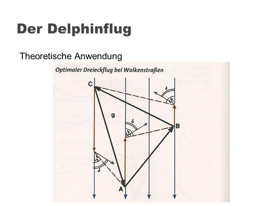 Der Delphinflug Theoretische Anwendung
