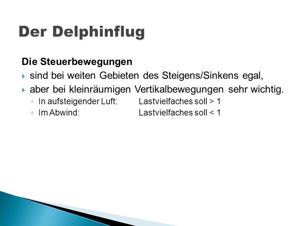 Der Delphinflug Die Steuerbewegungen