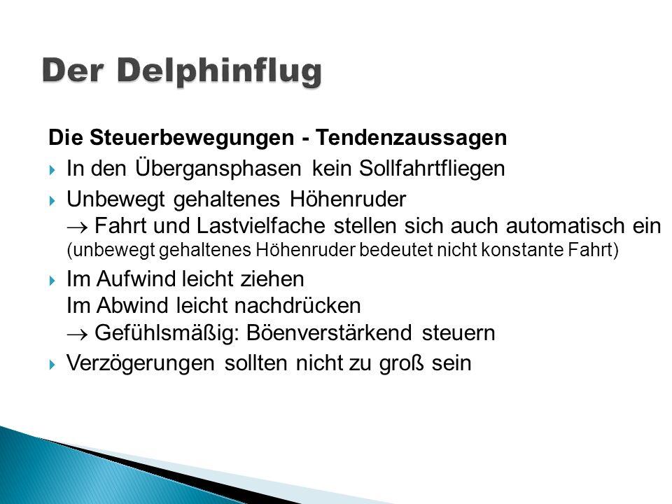 Der Delphinflug Die Steuerbewegungen - Tendenzaussagen