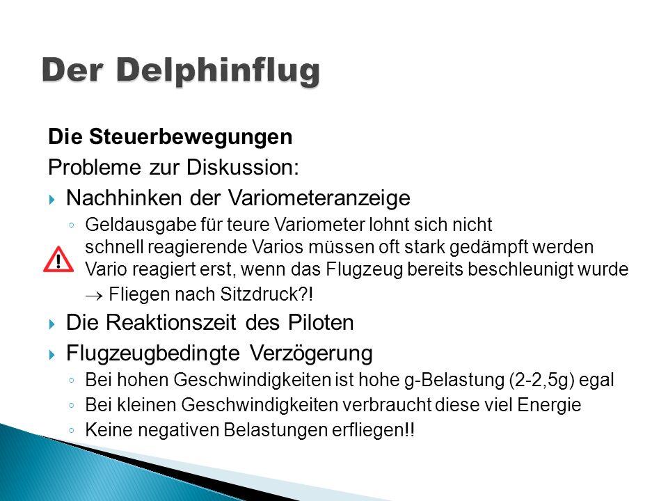 Der Delphinflug Die Steuerbewegungen Probleme zur Diskussion: