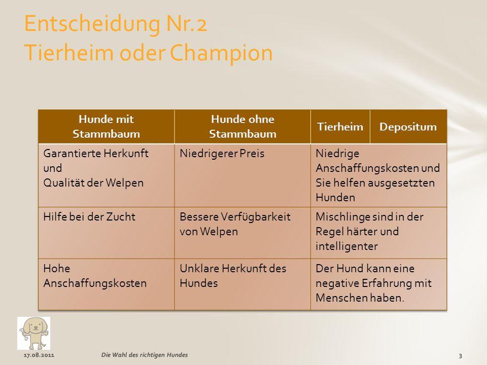 Entscheidung Nr.2 Tierheim oder Champion