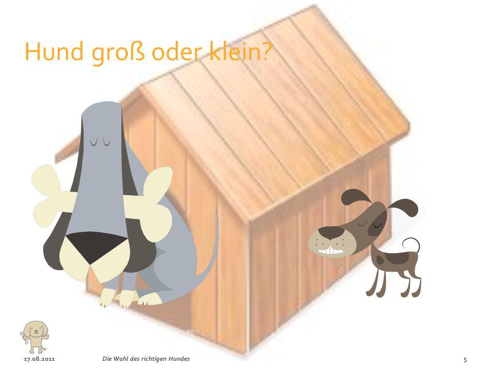 Hund groß oder klein 17.08.2011 Die Wahl des richtigen Hundes
