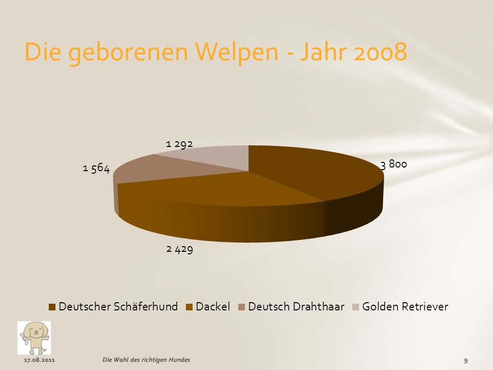Die geborenen Welpen - Jahr 2008