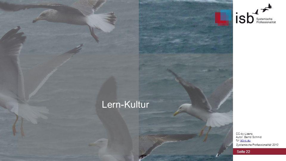 Lern-Kultur CC-by-Lizenz, Autor: Bernd Schmid für isb-w.eu