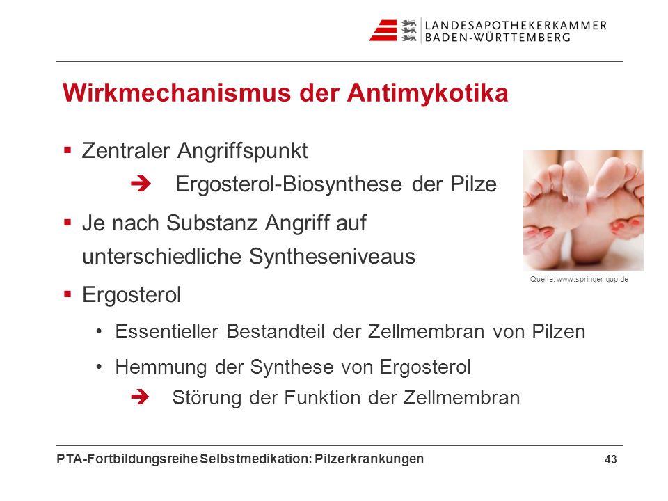 Wirkmechanismus der Antimykotika