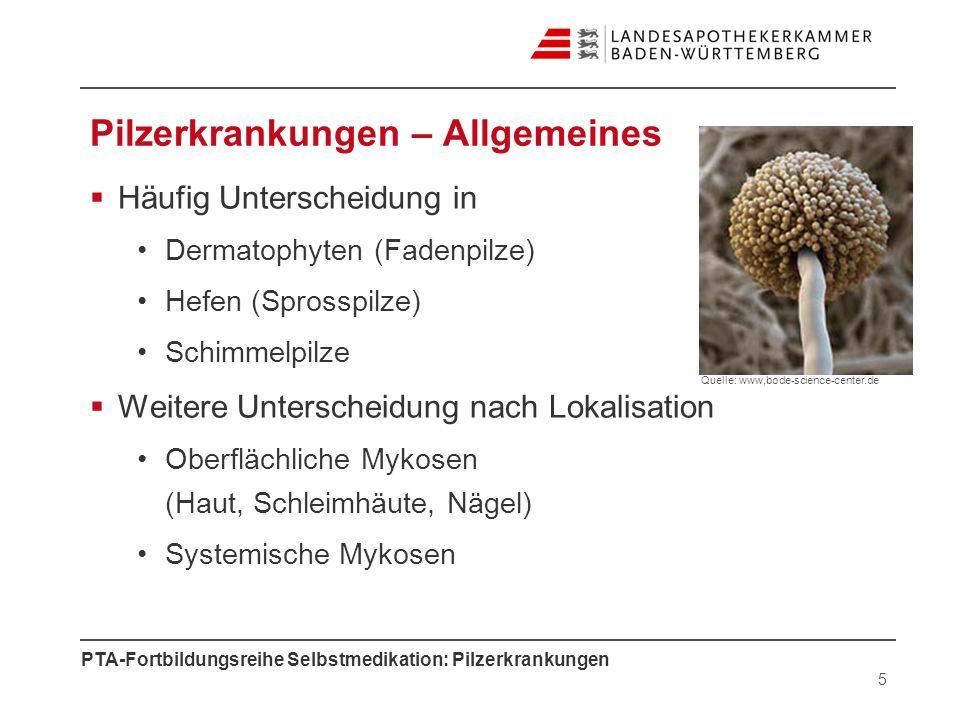 Pilzerkrankungen – Allgemeines