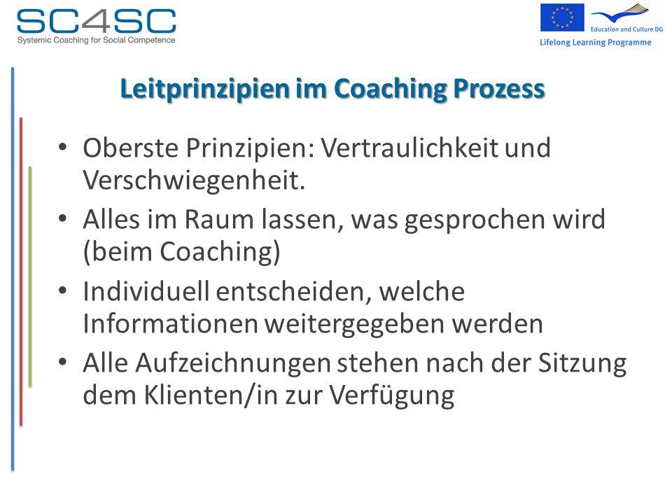 Leitprinzipien im Coaching Prozess