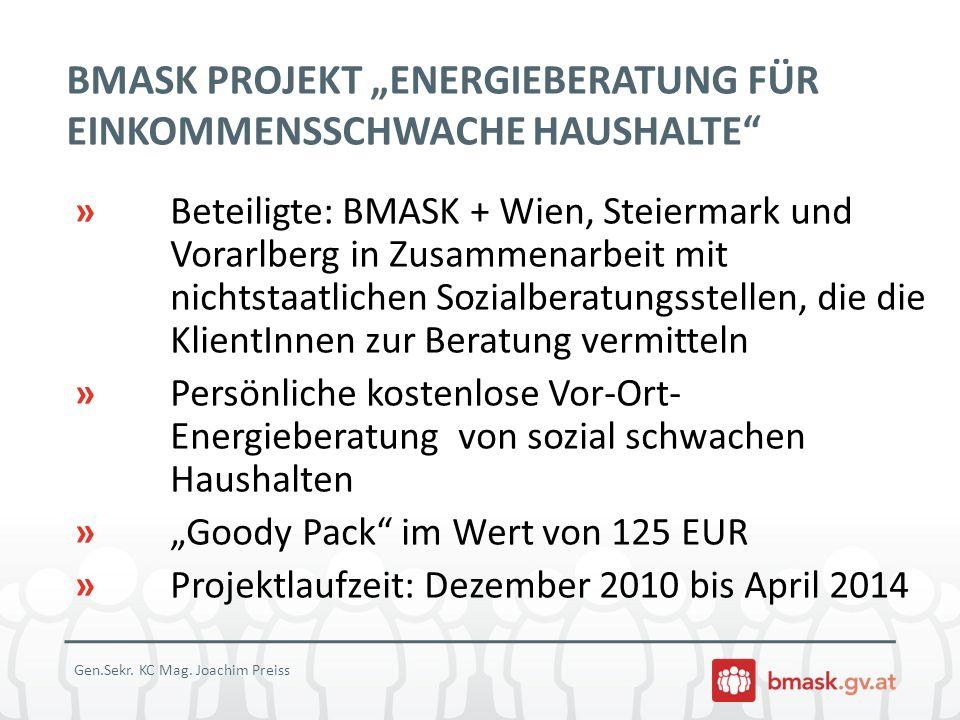 """BMASK PROJEKT """"ENERGIEBERATUNG FÜR EINKOMMENSSCHWACHE HAUSHALTE"""