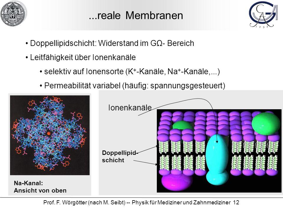 ...reale Membranen Doppellipidschicht: Widerstand im GΩ- Bereich
