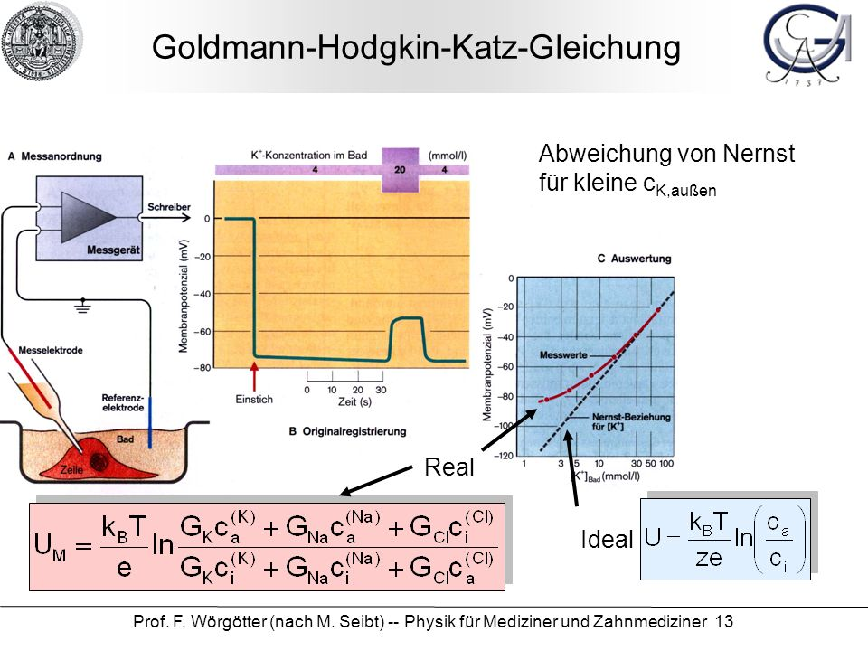 Goldmann-Hodgkin-Katz-Gleichung