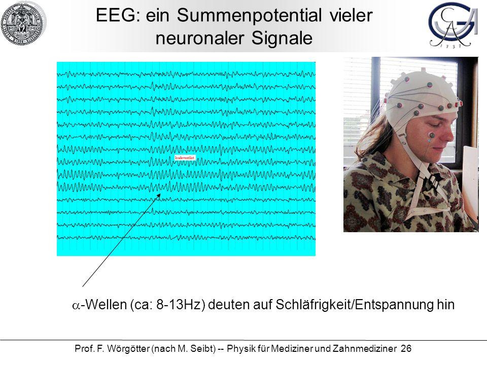 EEG: ein Summenpotential vieler neuronaler Signale