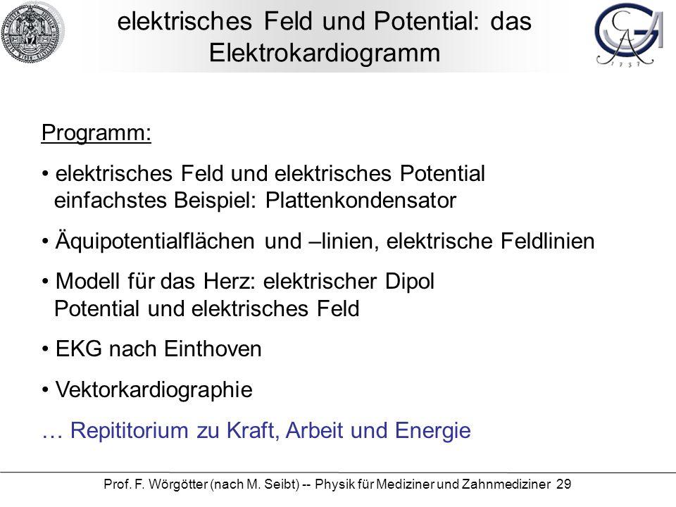 elektrisches Feld und Potential: das Elektrokardiogramm