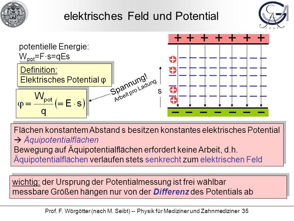elektrisches Feld und Potential