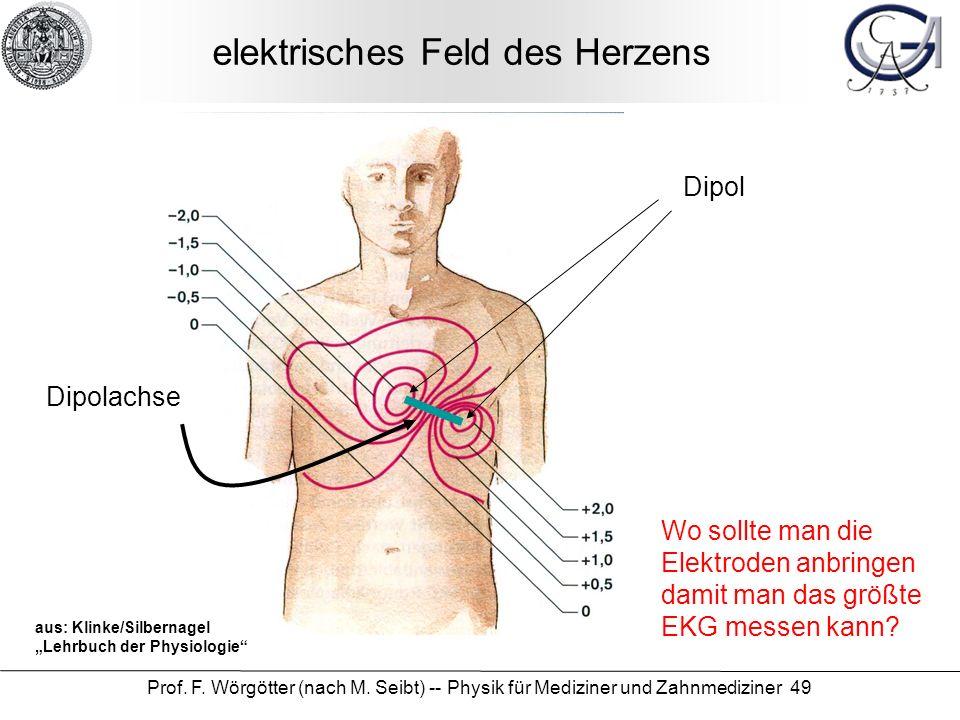 elektrisches Feld des Herzens