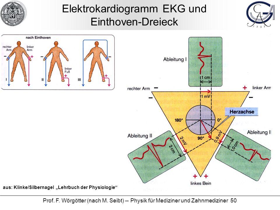 Elektrokardiogramm EKG und Einthoven-Dreieck