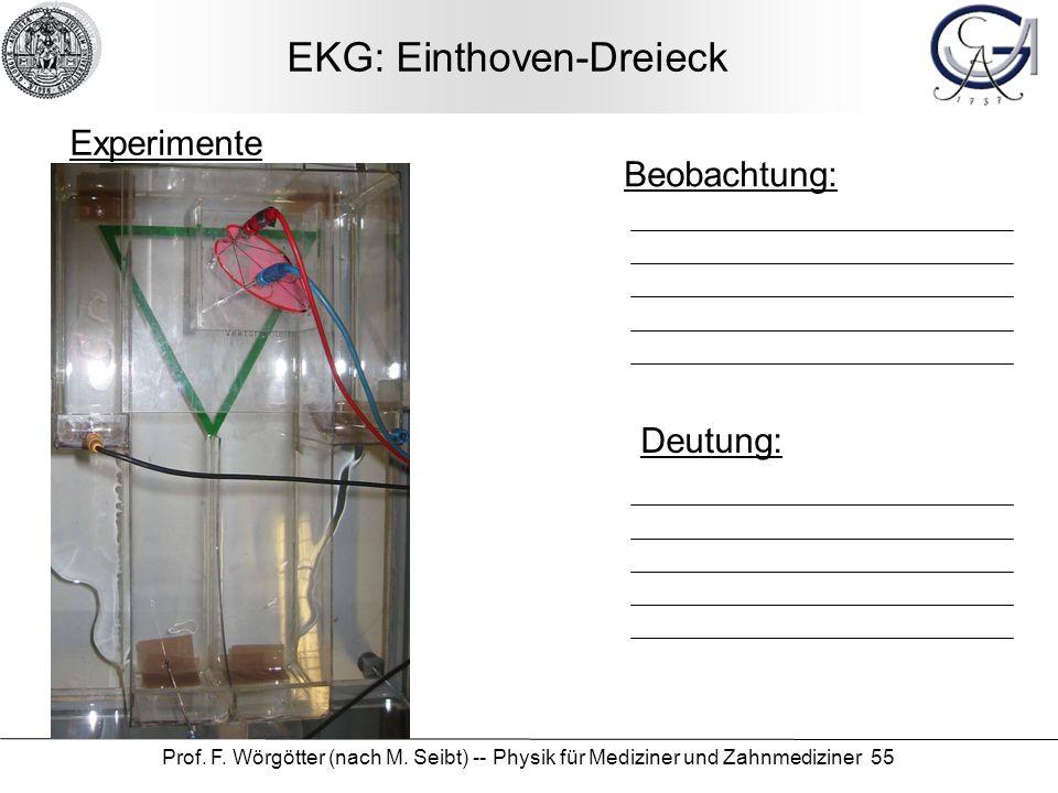 EKG: Einthoven-Dreieck