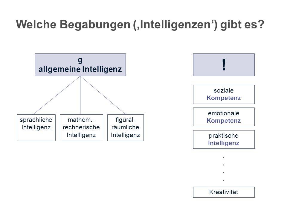 Welche Begabungen ('Intelligenzen') gibt es g allgemeine Intelligenz