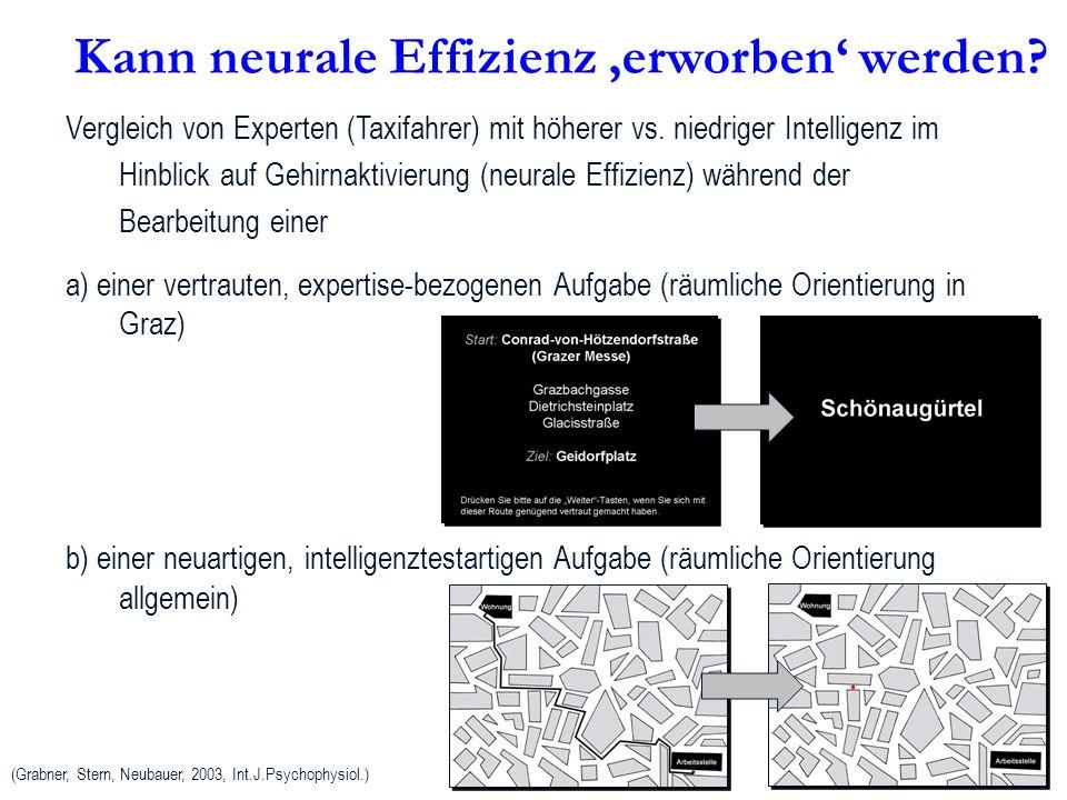 Kann neurale Effizienz 'erworben' werden