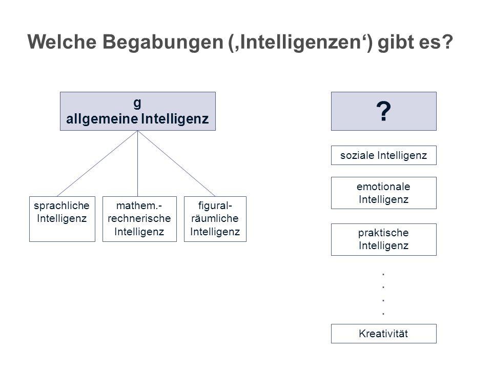 Welche Begabungen ('Intelligenzen') gibt es