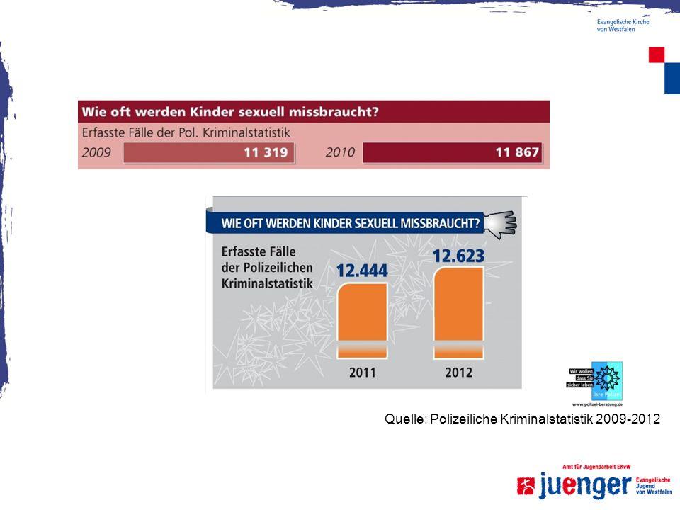 Quelle: Polizeiliche Kriminalstatistik 2009-2012