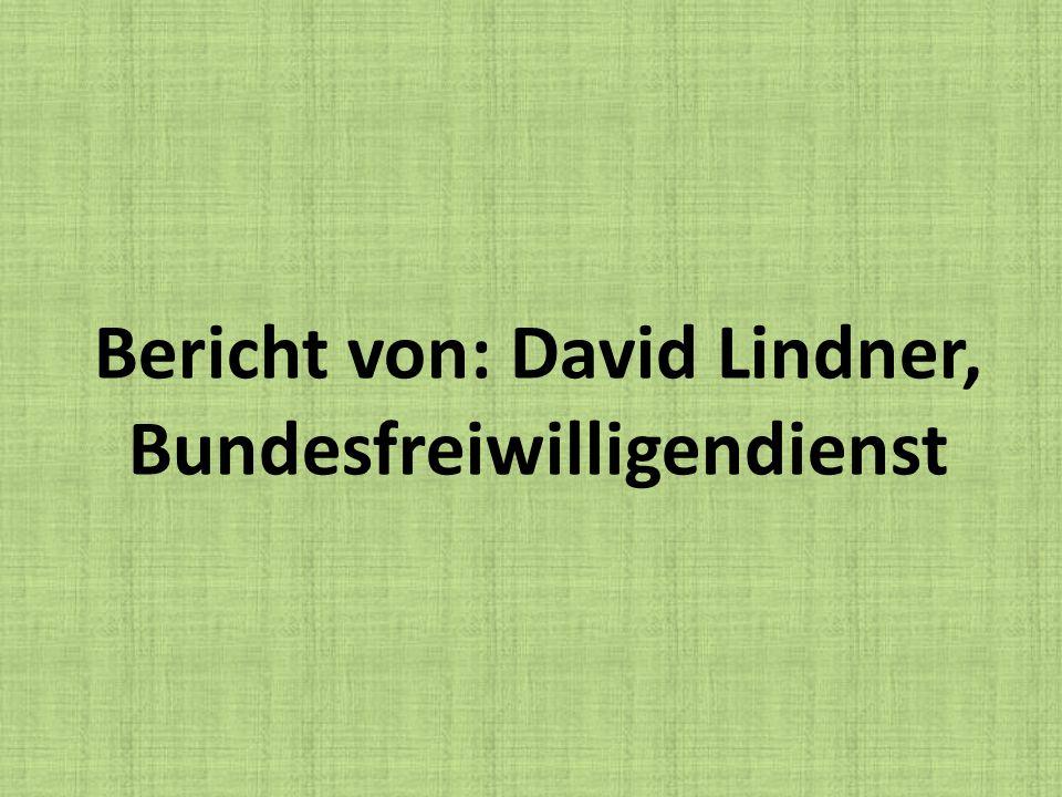 Bericht von: David Lindner, Bundesfreiwilligendienst