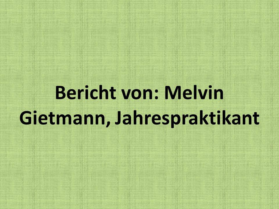 Bericht von: Melvin Gietmann, Jahrespraktikant