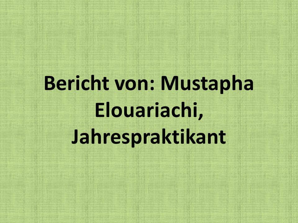 Bericht von: Mustapha Elouariachi, Jahrespraktikant