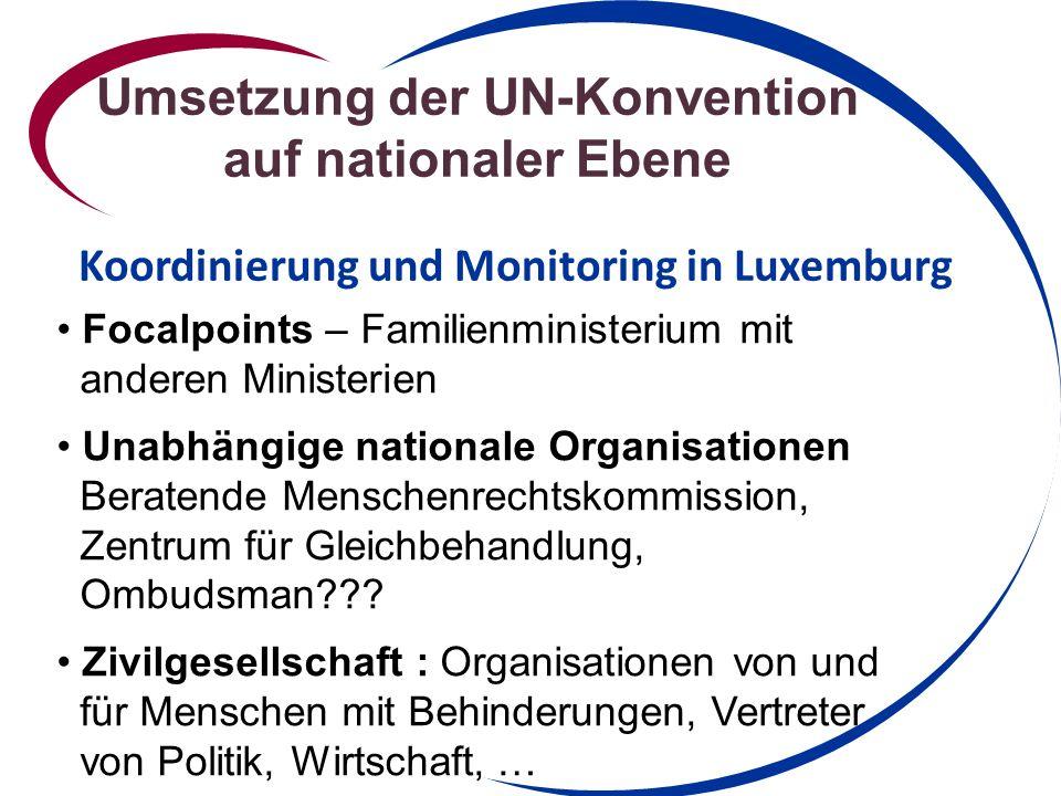 Umsetzung der UN-Konvention auf nationaler Ebene
