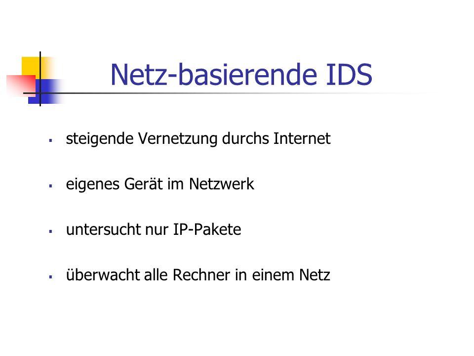 Netz-basierende IDS steigende Vernetzung durchs Internet