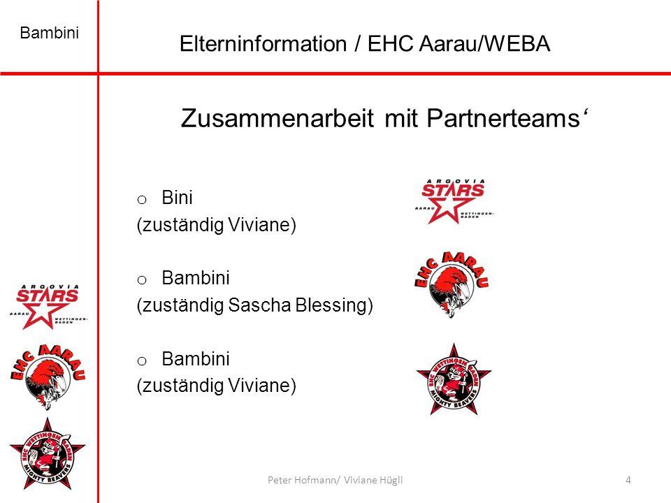 Zusammenarbeit mit Partnerteams'