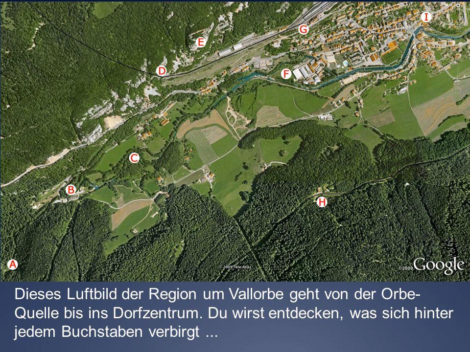 Dieses Luftbild der Region um Vallorbe geht von der Orbe-