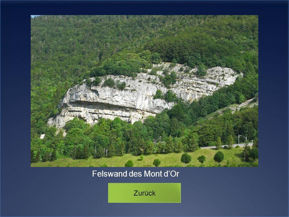 Felswand des Mont d'Or Zurück