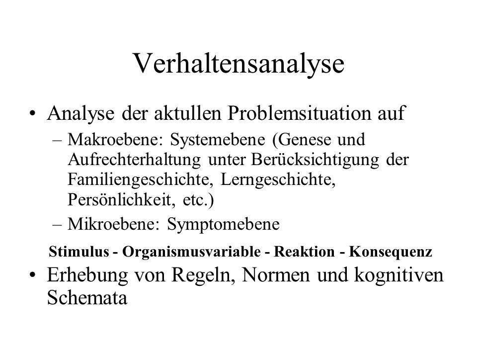 Verhaltensanalyse Analyse der aktullen Problemsituation auf