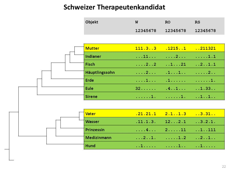 Schweizer Therapeutenkandidat