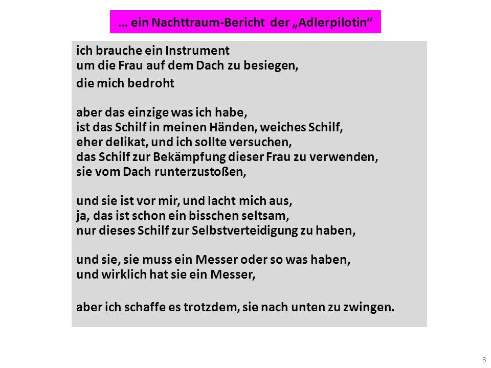 """… ein Nachttraum-Bericht der """"Adlerpilotin"""
