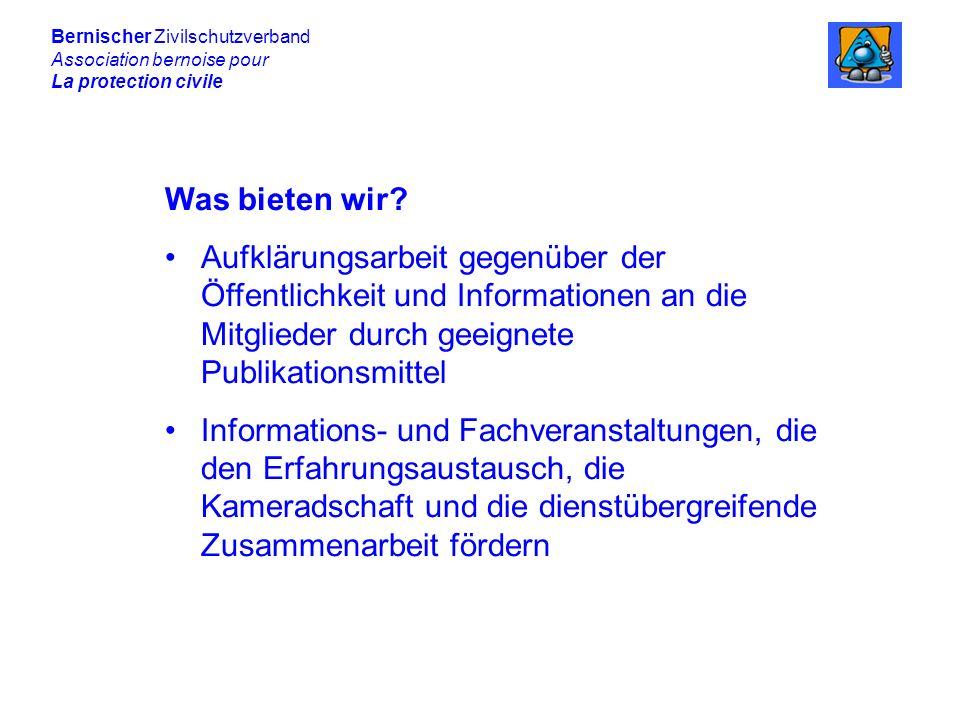 Bernischer Zivilschutzverband