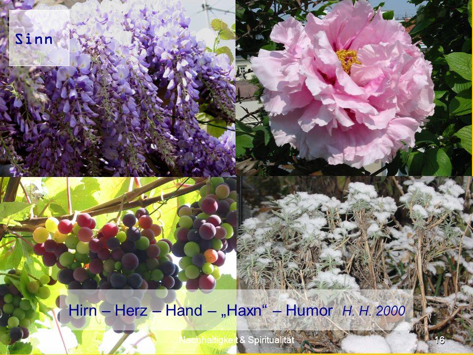 "Hirn – Herz – Hand – ""Haxn – Humor H. H. 2000"