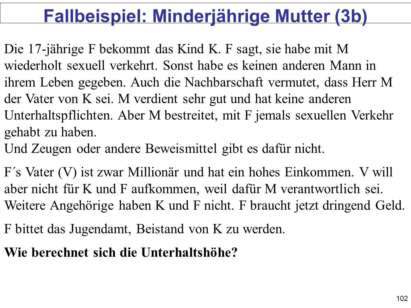 Fallbeispiel: Minderjährige Mutter (3b)