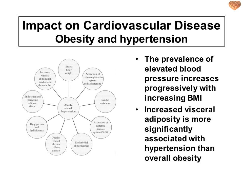 Impact on Cardiovascular Disease Obesity and hypertension