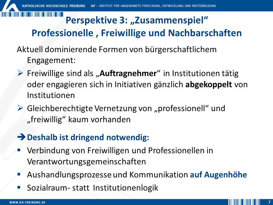 """Perspektive 3: """"Zusammenspiel Professionelle , Freiwillige und Nachbarschaften"""